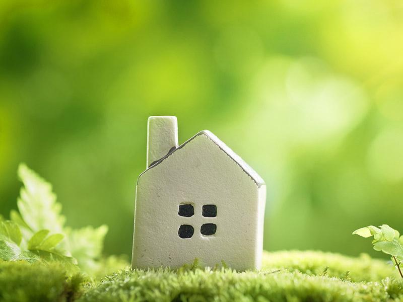 Energia verde, biogas e elettricità da fonti rinnovabili